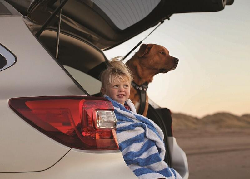 Best Dog-Friendly Cars in Cortlandt Manor, NY