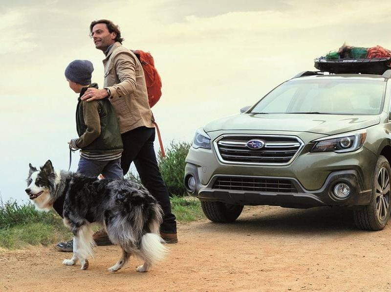 Dog-Friendly Subaru Outback